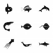 Water Wildlife Icons Set. Simple Set Of 9 Water Wildlife Icons For Web Isolated On White Background poster