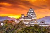 Himeji, Japan landscape with Himeji Castle at dawn. poster