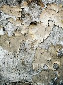 grungy wall Sandstone surface background poster