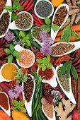 Spice and herb food seasoning collection with fresh and dried spices and herbs in porcelain bowls an poster