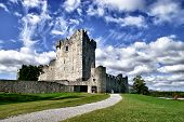 Ross Castle, County Kerry, Ireland