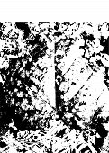 Leaves Texture Black And White Urban Rough Texture Vector.  Place Over Any Object Create Black Grung poster