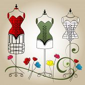 pic of hourglass figure  - vector mannequins - JPG