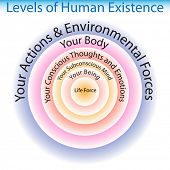 An image of the levels of human existence chart.