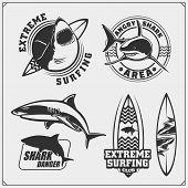 Set Of Surfing Emblems With Shark. Surf Design Elements. Print Design For T-shirts. poster