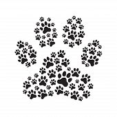 Paw Print Filled With Paw Prints. poster