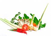 thai vegetable herb for Spicy Shrimp Soup prepare on white background poster