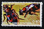 EQUATORIAL GUINEA - CIRCA 1973: stamp printed in Guinea dedicated to insects shows scavenger beetle
