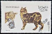 OMAN - CIRCA 1973: stamp printed in State of Oman dedicated to cats shows manx cat circa 1973