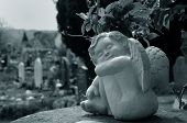 stock photo of funeral home  - Cherub keeping the sleeping company taken in Bakewell 3rd May 2008 - JPG