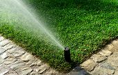 stock photo of drought  - Automatic garden irrigation sprinkler system - JPG