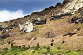 Heads Of Maoi On Rano Raruku  Mountain In Easter Island