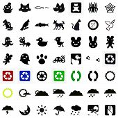 animals and weather icons