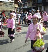 Ladies In Pink At Floral Festival In Chiang Mai Nth Thailand
