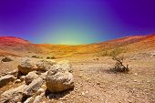 stock photo of samaria  - The Stone Hills of Samaria Israel - JPG
