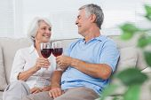 Mature couple clinking their glasses of red wine at home on the couch