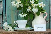 stock photo of jasmine  - Jasmine flowers teacup and thank you card - JPG