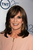 LOS ANGELES - JUL 24:  Linda Gray arrives at TNT's 25th Anniversary Party at the Beverly Hilton Hote