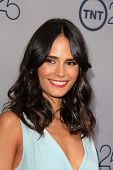 LOS ANGELES - JUL 24:  Jordana Brewster arrives at TNT's 25th Anniversary Party at the Beverly Hilto