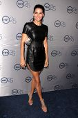 LOS ANGELES - JUL-24: Angie Harmon kommt bei TNT 25th Anniversary Party im Beverly Hilton Ho
