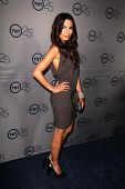 LOS ANGELES - JUL 24:  Nadine Velazquez arrives at TNT's 25th Anniversary Party at the Beverly Hilto
