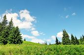 picture of hayfield  - scenic mountain peaks against the blue sky