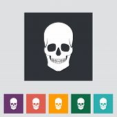 Anotomy skull flat icon.