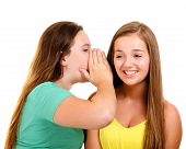 Laughing teenage girls whispering and gossiping isolated on white
