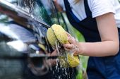foto of suds  - Female hand with yellow sponge washing car - JPG