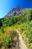 Many Glacier Hiking Trail Montana