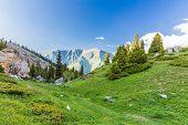 Nature Near Big Almaty Lake, Tien Shan Mountains In Almaty, Kazakhstan,asia At Summer