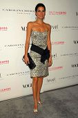 LOS ANGELES - NOVEMBER 13: Angie Harmon at the opening of the Carolina Herrera Los Angeles Boutique