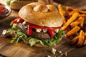picture of portobello mushroom  - Healthy Vegetarian Portobello Mushroom Burger with Cheese and Veggies - JPG