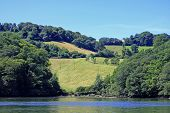 picture of dartmouth  - rolling fields by the River Dart - JPG
