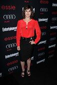 Lizzy Caplan at the Entertainment Weekly Pre-SAG Party, Chateau Marmont, West Hollywood, CA 01-26-13
