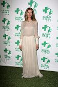 Dawn Olivieri at the Global Green USA's 10th Annual Pre-Oscar Party, Avalon, Hollywood, CA 02-20-13