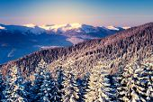 Amazing mountains in the morning sunlight. National Park. Carpathian, Ukraine, Europe. Beauty world.