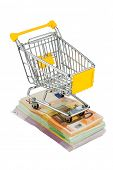 shopping cart is on banknotes, symbolic photo for shopping, purchasing power, money printing and inf
