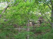 stock photo of starving  - Box Canyon and beautiful spring time trees at Starved Rock State Park