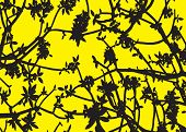 Silhouette Black Leaves Yellow Background Vector