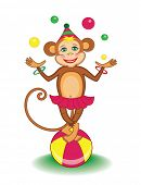 cute circus marmoset (vector illustration for children's books)