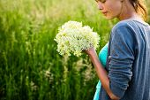 image of elderflower  - Young woman picking elderflower to make infusion - JPG