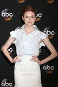 LOS ANGELES - JUL 15:  Karen Gillan at the ABC July 2014 TCA at Beverly Hilton on July 15, 2014 in B