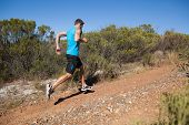 Athletic man jogging up country trail on a sunny day