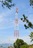 foto of relay  - Tower relay signal and tree on blue sky background - JPG