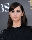 LOS ANGELES - NOV 14:  Felicity Jones arrives to the The Hollywood Film Awards 2014 on November 14, 2014 in Hollywood, CA