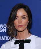 LOS ANGELES - AUG 14:  Abigail Spencer arrives to the HFPA Annual Installation Dinner 2014 on August 14, 2014 in Beverly Hills, CA