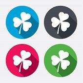 foto of saint patrick  - Clover with three leaves sign icon - JPG