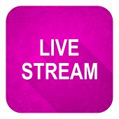 live stream violet flat icon, christmas button