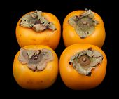 Four persimmon fruits